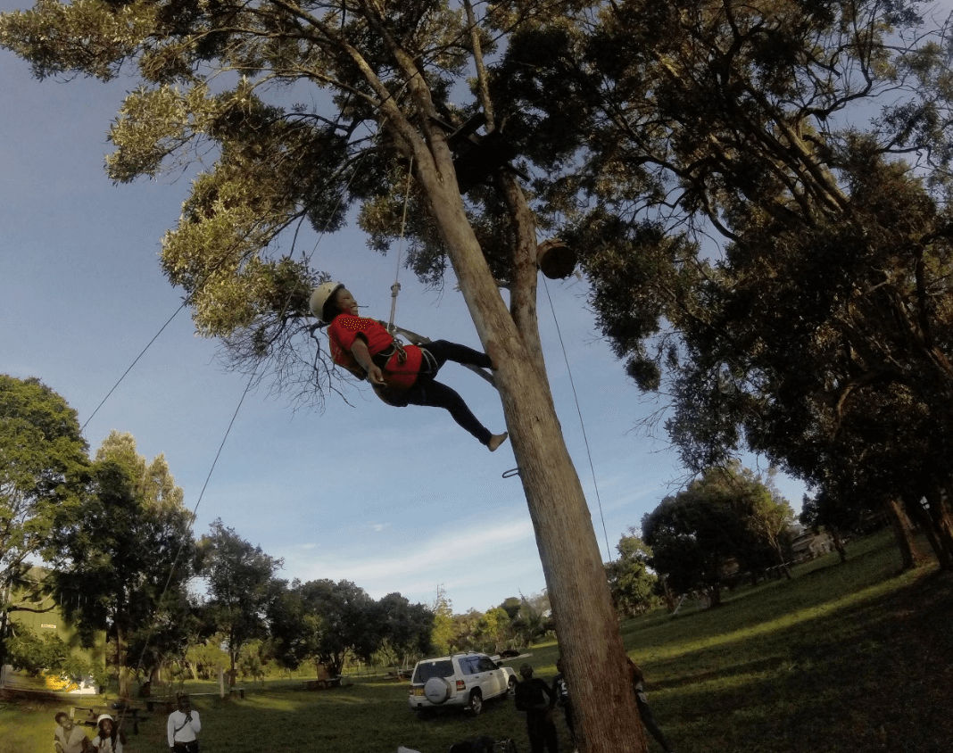 Tree Climbing and abseil